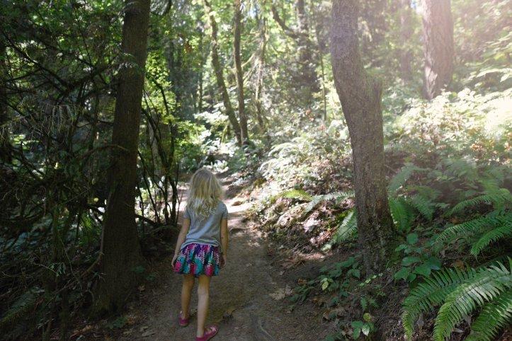 ForestPark1